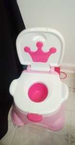 The Princess' Potty