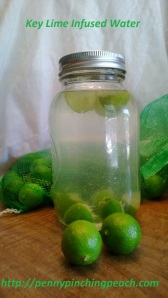 Key Lime Infused Water
