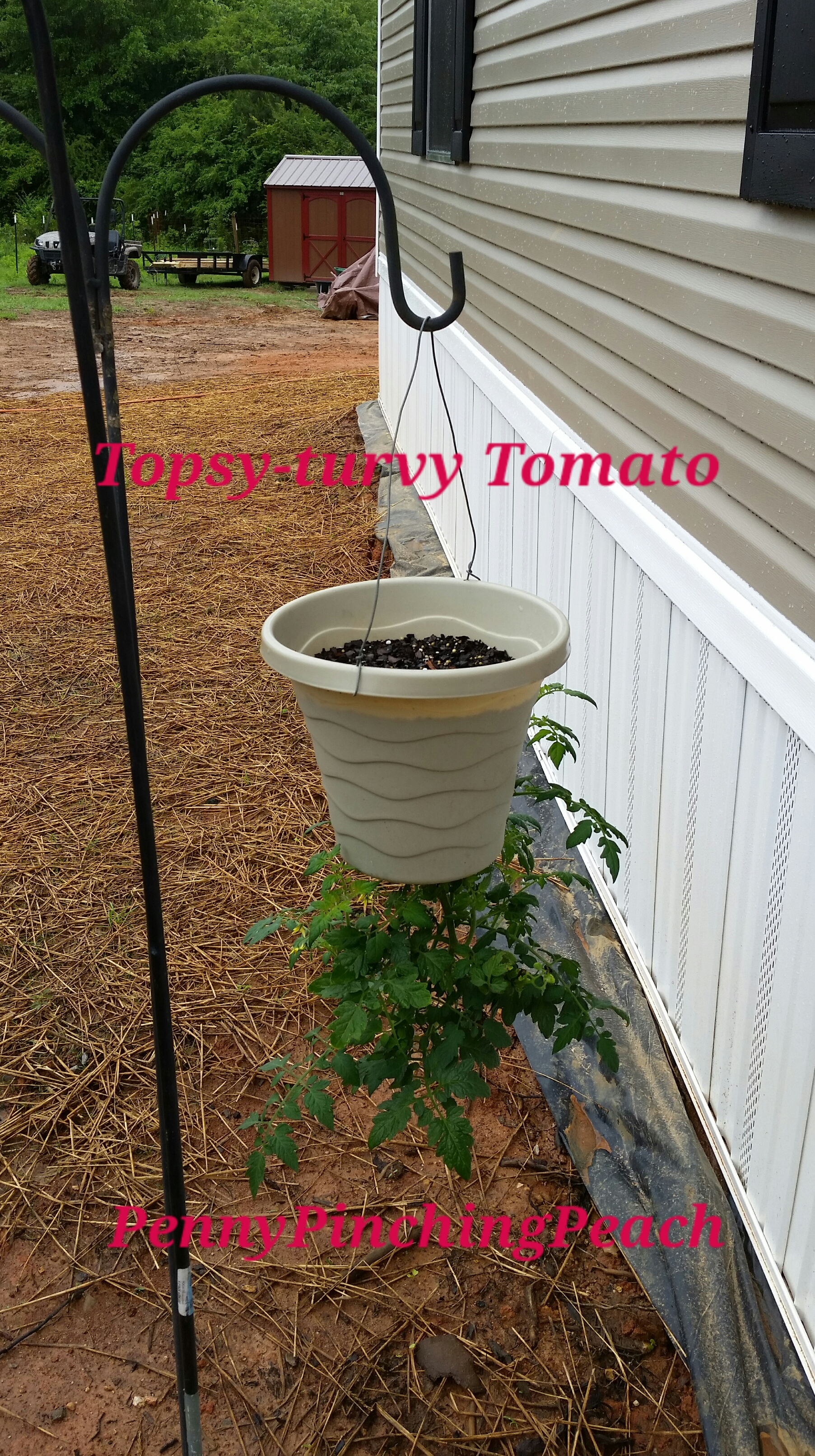 Make your own attractive topsy turvy planter penny for Create your own penny