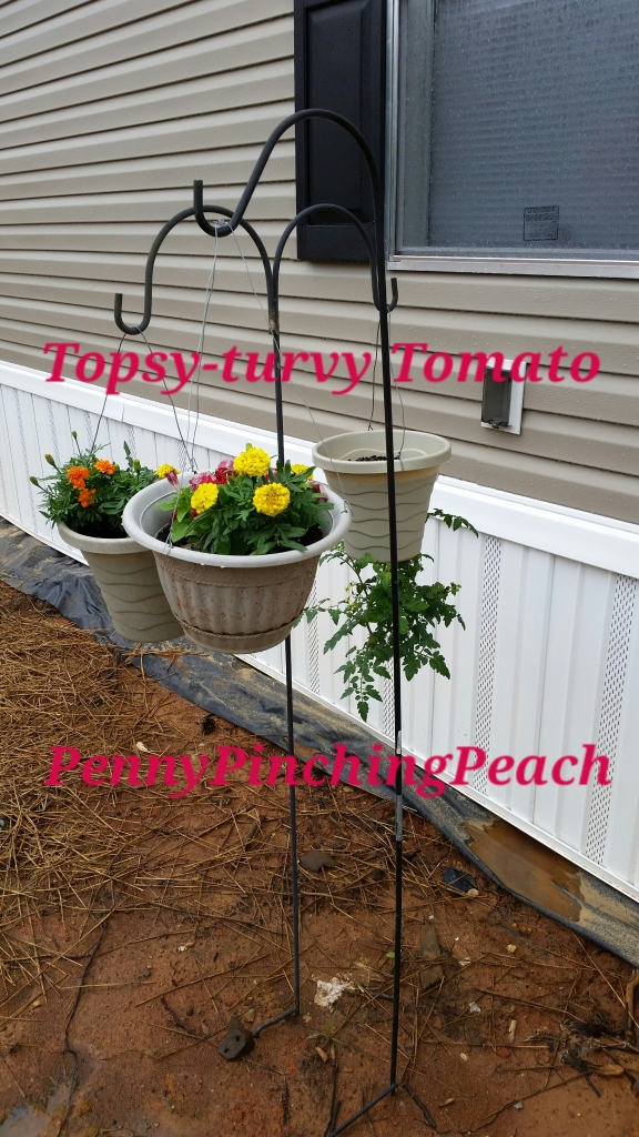 DIY Topsy Turvy Tomato and Friends